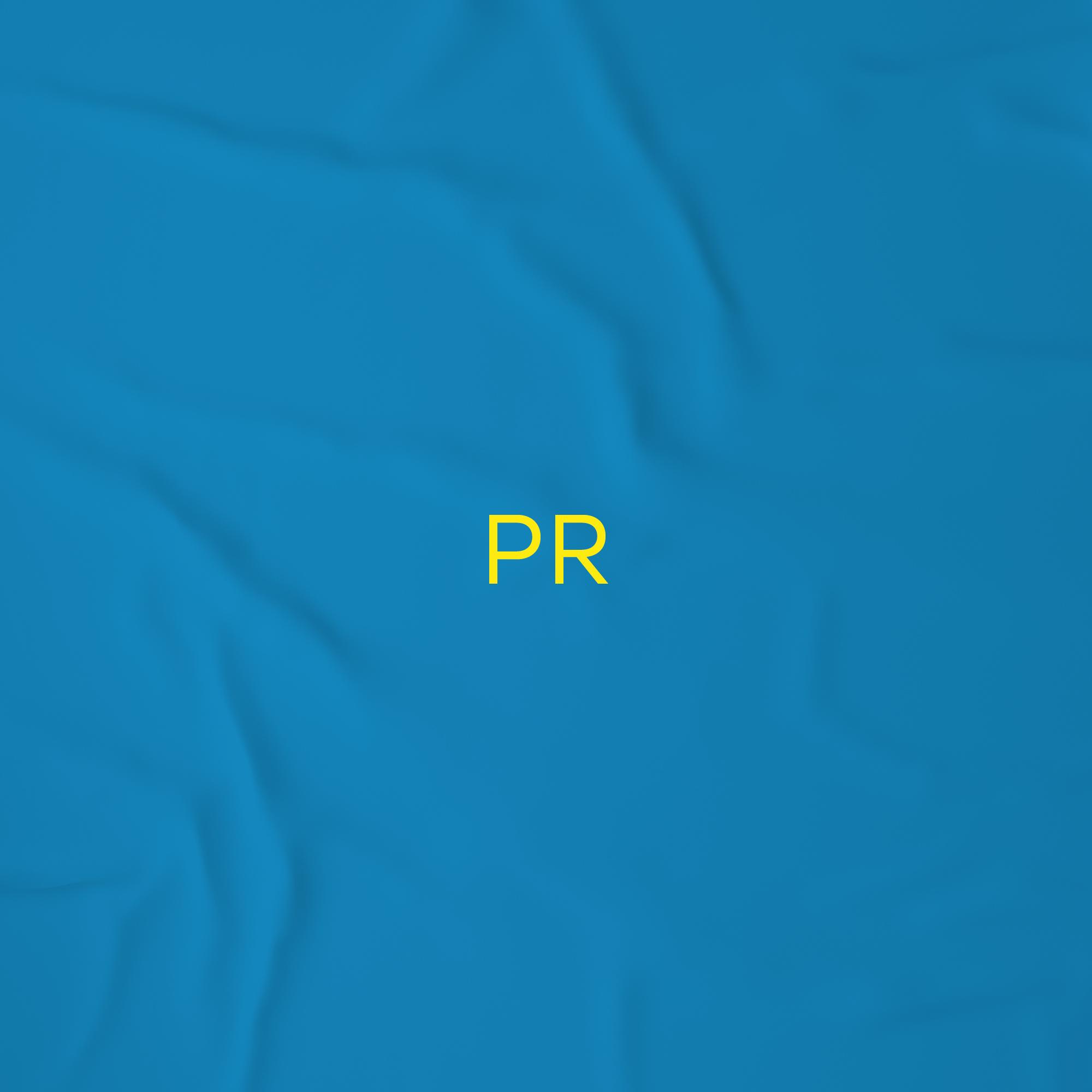 pr services icon